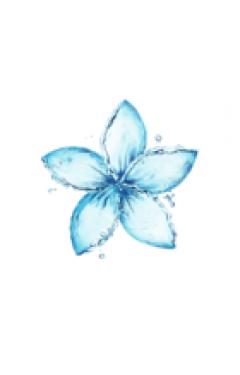 Душистая вода герани